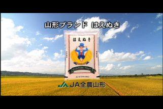 JA全農山形<br>「はえぬき」TVCM